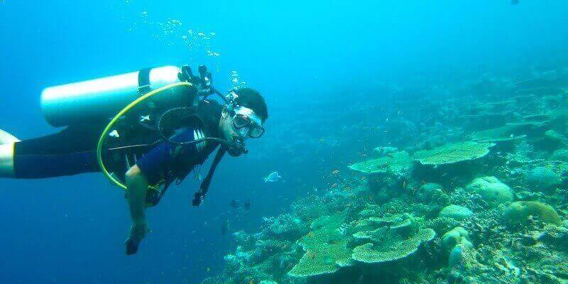Diving - What To Do In Madeira Island During Your Vacation?