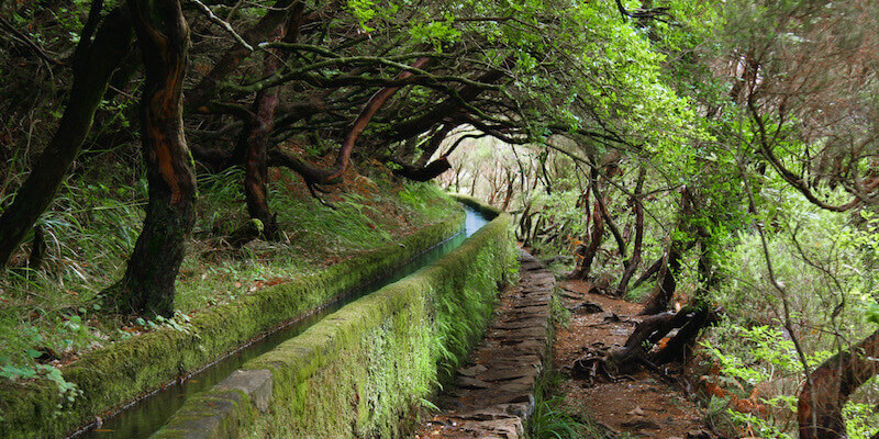 Levada Walks - What To Do In Madeira Island During Your Vacation?