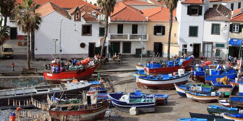 Sport Fishing - What To Do In Madeira Island During Your Vacation?