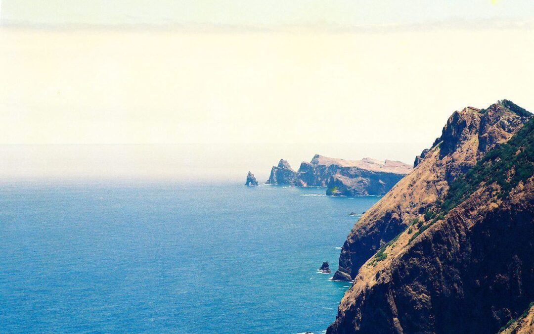 Top 5 Boat Trips On The Madeira Island Coast That You Will Love In 2021