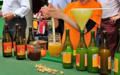 Top 5 Best Madeira Drinks To Know In Your Next Trip To Madeira Island